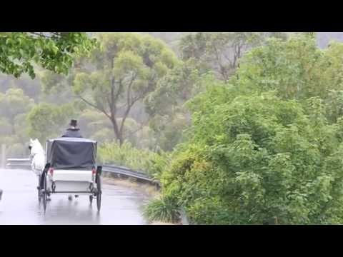 your-beautiful-wedding-at-mount-lofty-house,-adelaide-hills