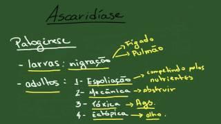 Ascaridíase - Resumo - Parasitologia