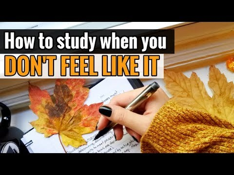 How to Study When You Don't Feel Like It
