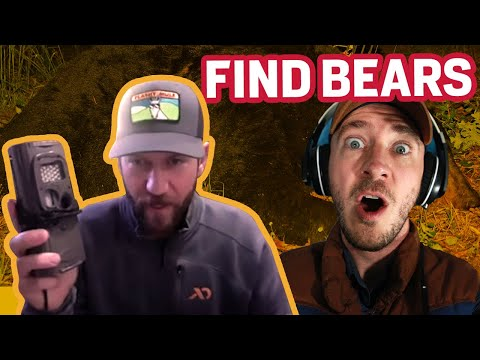 How To Find Bears In The Fall | Fall Bear Hunting 2020