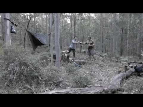 Deer Hunting Australian State Forest April 2016 - aka Gorillas in the Mist