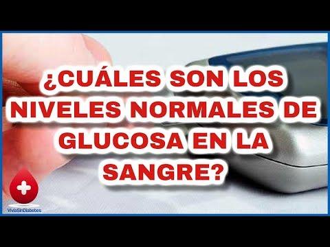 Cuales son los Niveles Normales de Glucosa - Vigilia tus Valores de azucar en la Sangre
