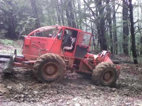 taf la pădure