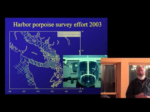 Calambokidis lecture on harbor porpoise and other cetaceans in the Salish Sea