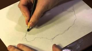 How to Draw Pond Algae