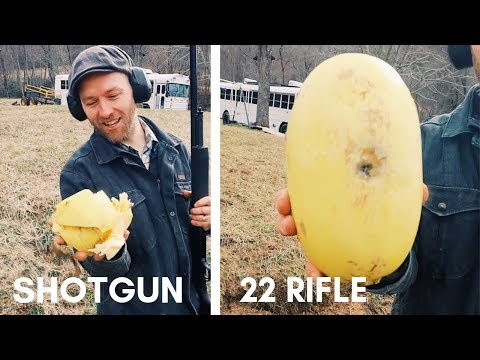 22 Rifle VS Shotgun for Pig Harvest ~ the Squash Test