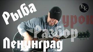 Рыба-Ленинград(Разбор кавера+Простые аккорды)