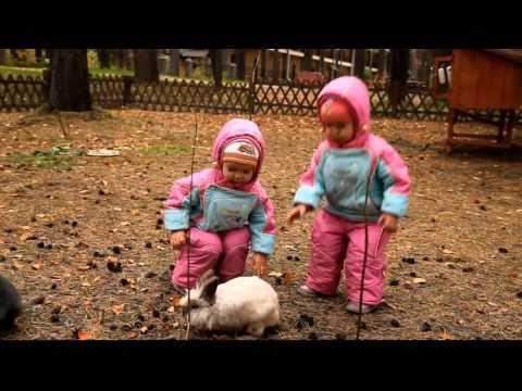 Двойняшки играют с зайчиками и катаются с большой горки. Дом отдыха Дружба, Красноярск.из YouTube · Длительность: 4 мин8 с