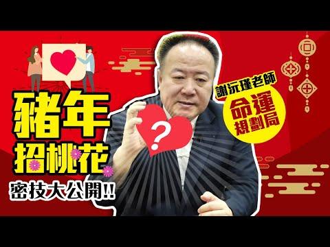 【命運規劃局】2019豬年招桃花密技大公開- 謝沅瑾老師