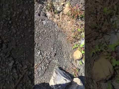 Weird finding
