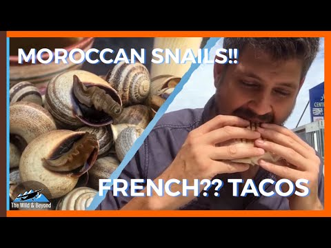 SNAIL SOUP, FRENCH TACOS, & GRILLED SARDINES | Moroccan Street Food Tour in Tangier, Morocco
