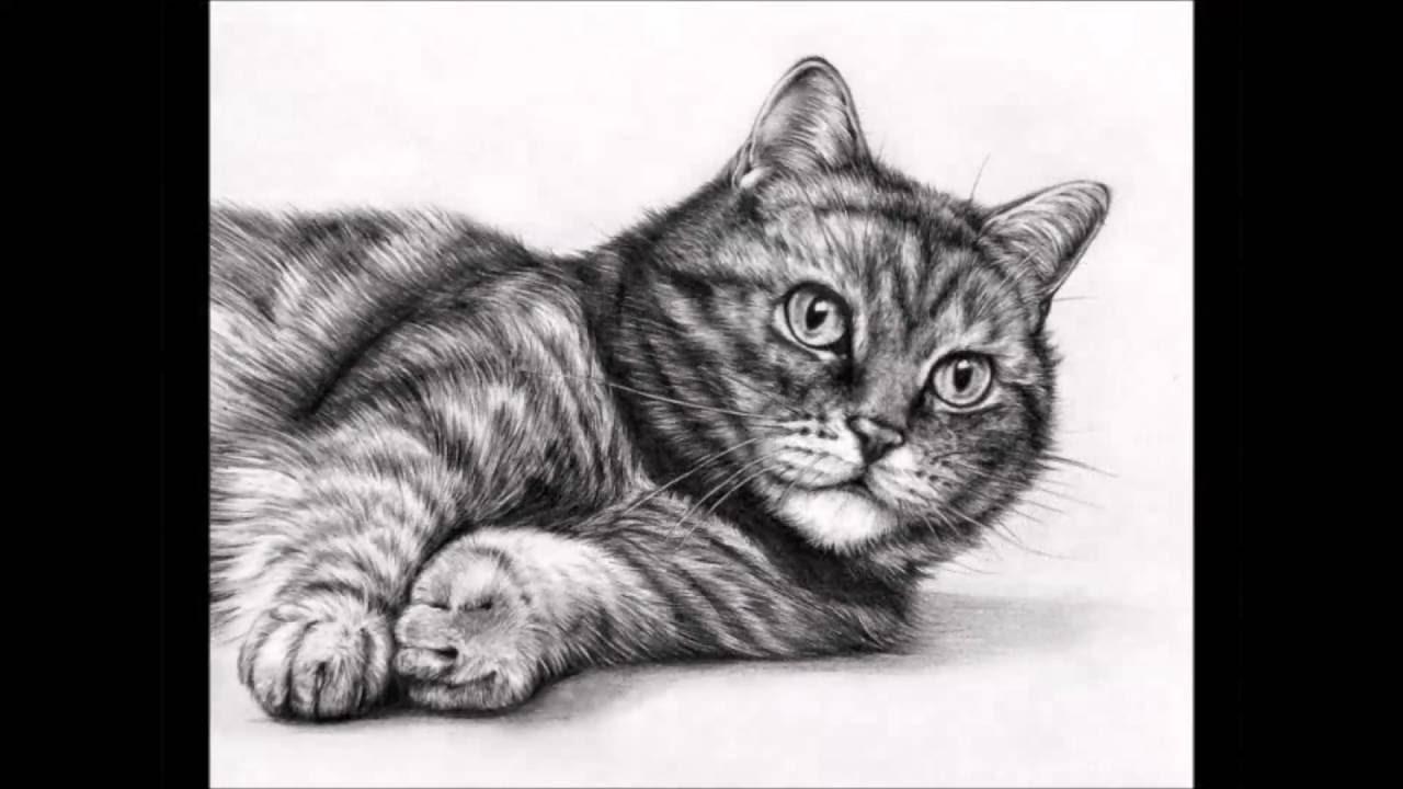 Очень красивые рисунки карандашом - YouTube