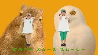 グリーンダカラちゃん&ムギちゃん、子どもが朝スッキリ起きられる音楽で可愛く踊る サントリー新商品『GREEN DA・KA・RA まぜまぜスムージー』スペシャル動画「まぜまぜスムージーの唄」&検証動画 thumbnail