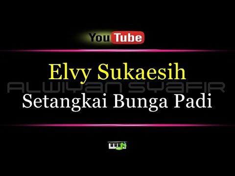 Karaoke Elvy Sukaesih - Setangkai Bunga Padi