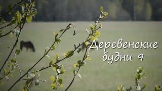 Деревенские будни 9