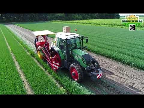 Biologische Preiplanten Rooien 2017| Harvesting Organic Leek Plants| Keizers Plantproducts