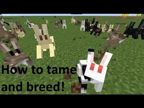 The updated rabbits in snapshot 15w46a. : Minecraft