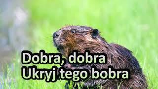 DJ Farad - Dobra, dobra, ukryj tego bobra