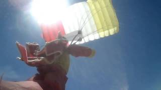 Flight of the Skydiver