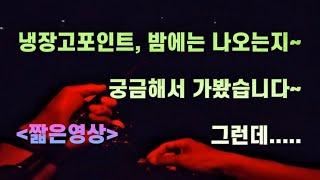 냉장고포인트 (밤낚시편) / 짧은영상 / 영동 / 금강…