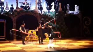 Цирковые кошки и собаки Волшебный подарок