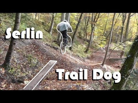 DOG DOWNHILL // SERLIN TRAIL