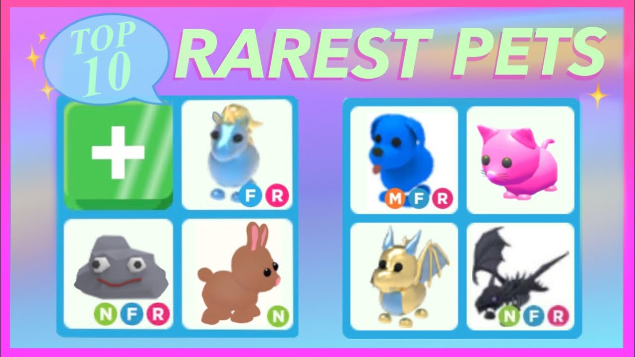 Top 10 Rarest pets in Adopt Me YouTube