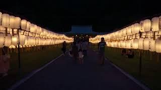【夏祭り】 静岡県 護国神社 みたま祭 '17 8/13  【提灯】