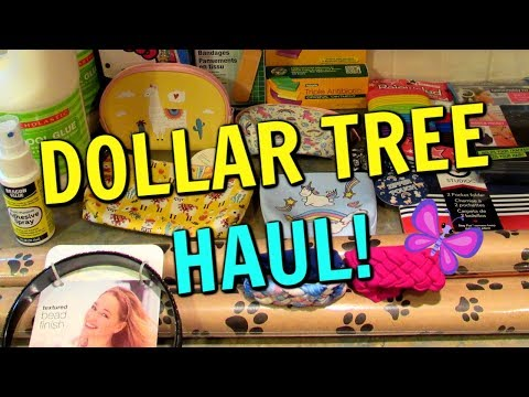 New DOLLAR TREE HAUL! Fun New Finds! June 21, 2019 | LeighsHome