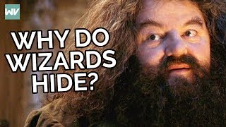Why Wizards Hide From Muggles In Harry Potter!