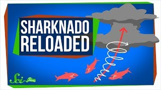 Sharknado Reloaded: Yep, Still Impossible