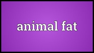 Animal fat Meaning