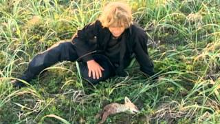 Grizzly Man - Dead Fox Scene