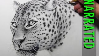 How to Draw a Leopard [Narrated, Step by Step](HOW TO DRAW ANIMALS PLAYLIST: https://www.youtube.com/playlist?list=PLBiW8y5LSHK5D-eaX6QqD5NM8B-Tpmvew REALISM CHALLENGE BOOK: ..., 2015-05-16T15:49:39.000Z)