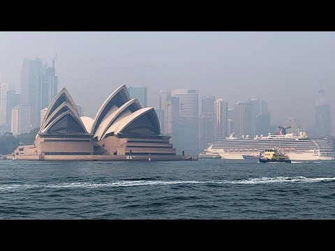 شاهد: دخان الحرائق يملأ سماء العاصمة الأسترالية لليوم الثالث على التوالي…  - نشر قبل 3 ساعة