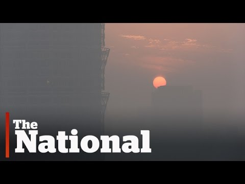 Surviving China's smog