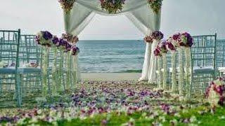 Аренда свадьба (https://mebelvarendu.com.ua)(, 2017-03-29T08:35:21.000Z)