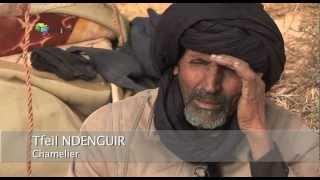 Tourisme: la Mauritanie toujours en zone rouge