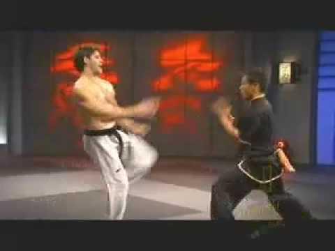 taekwondo VS wushu!!!!