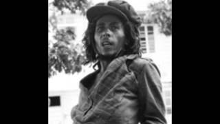 Bob Marley and the Wailers -   Buffalo Soldier Dub