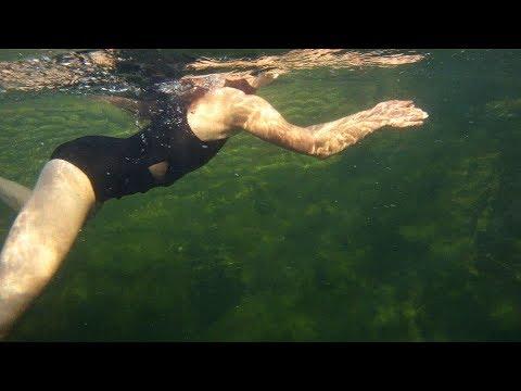 How To Fix A Massive Pool Full Of Algae