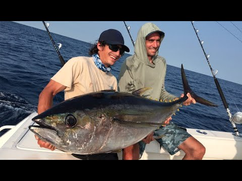 Covered Up In Big Tuna, New Jersey Offshore Fishing