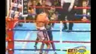 Roy Jones Jr. - The Unstoppable