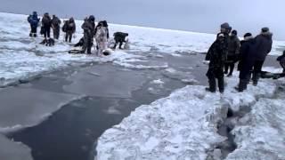 Уходит лед с рыбаками...