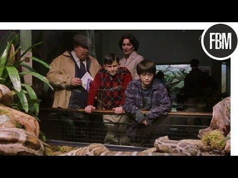Гарри находит общий язык со змеей в зоопарке / Гарри Поттер и философский камень