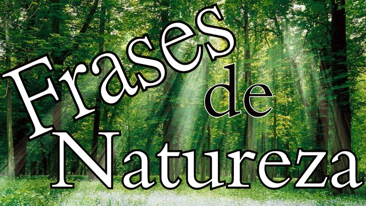 Extremamente Belas Frases FRASES SOBRE A NATUREZA | MEIO AMBIENTE | - YouTube FP97