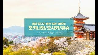 봄에 가기 좋은 일본 여행지 추천! 오키나와/오사카/큐…