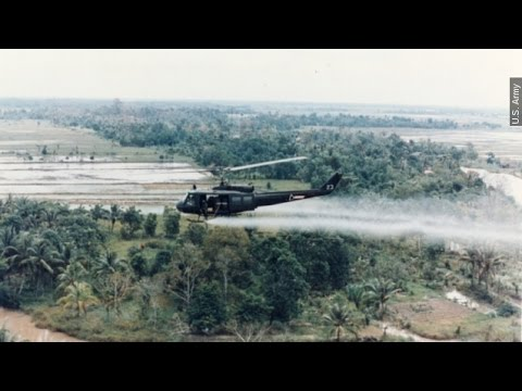 What Agent Orange Does To The Body