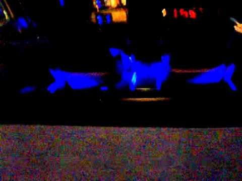 Bayliner 2051 SS Capri met blauwe LED verlichting met draaiende ...