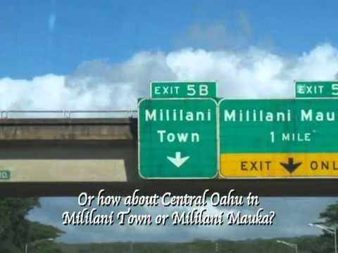 Honolulu County Buzz